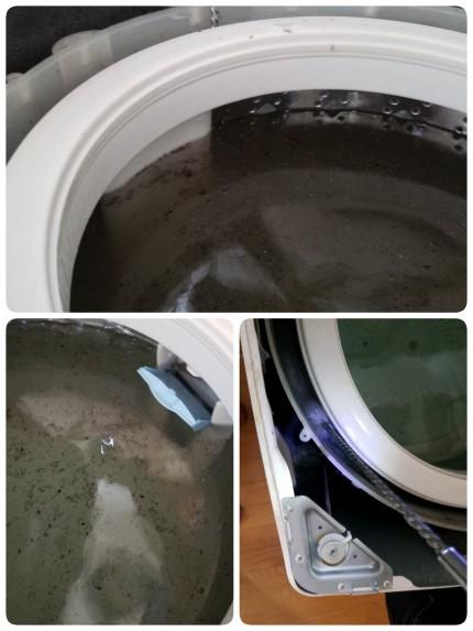 洗濯槽のクリーニング
