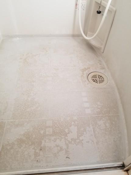 浴室床汚れ
