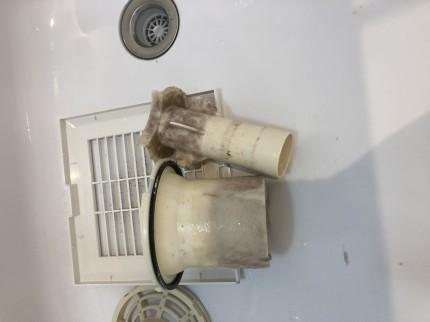 浴室排水口汚れ