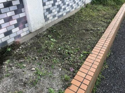 花壇の除草